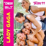 Lady Gaga Mix -Tribe99 (SLT Remix)