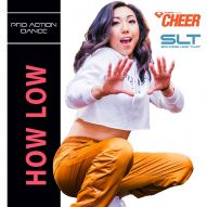 How low - Pro Action Dance (SLT Remix)