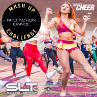 Pro Action Dance - Mash Up Challenge (SLT Remix)