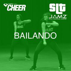 Bailando - JAMZ Camp - (SLT Remix)