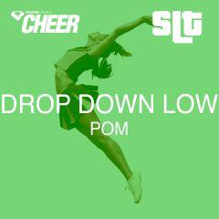 Drop Down Low - Pom - (SLT Remix)