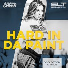 Hard In Da Paint - Pro Action Dance (SLT Remix)