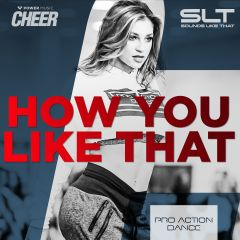 How You Like That - Pro Action Dance (SLT Remix)