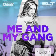 Me & My Gang - Pro Action Dance (SLT Remix)