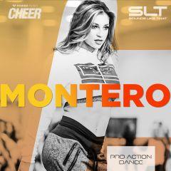 Montero - Pro Action Dance (SLT Remix)