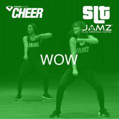 Wow. - JAMZ Camp (SLT Remix)