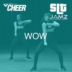 Wow - JAMZ Camp Sideline (SLT Remix)