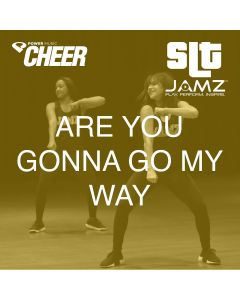 Are You Gonna Go My Way - JAMZ Camp (SLT Remix)