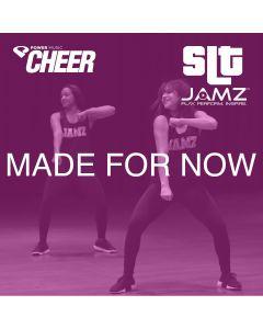 Made For Now - JAMZ Camp (SLT Remix)