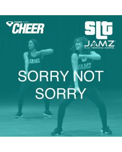 Sorry Not Sorry - JAMZ Camp (SLT Remix)