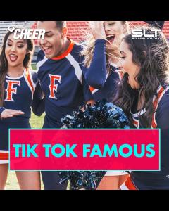 Tik Tok Famous (SLT Remix)