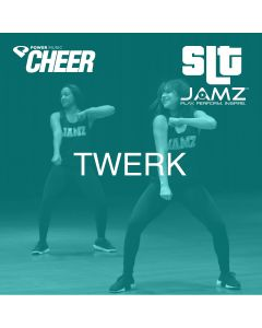 Twerk - JAMZ Camp (SLT Remix)