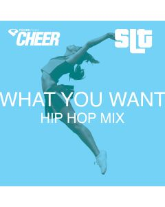 What You Want – Hip Hop  – (SLT Remix)