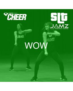 Wow. - JAMZ Camp (SLT Remix)