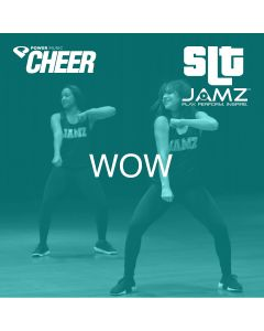 Wow - JAMZ Camp Sideline (SLT Remix)
